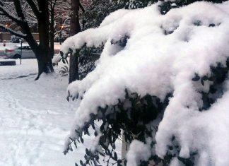 Winter in Canada; Photo File / ©The Pacific Post
